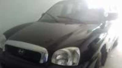 Bán xe ô tô Hyundai Santa Fe Gold 2.0 AT 2004 giá 289 Triệu
