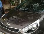 Bán xe ô tô Kia Rio 1.4 AT 2016 giá 548 Triệu