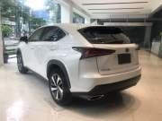 Bán xe ô tô Lexus NX 300 2018 giá 2 Tỷ 550 Triệu