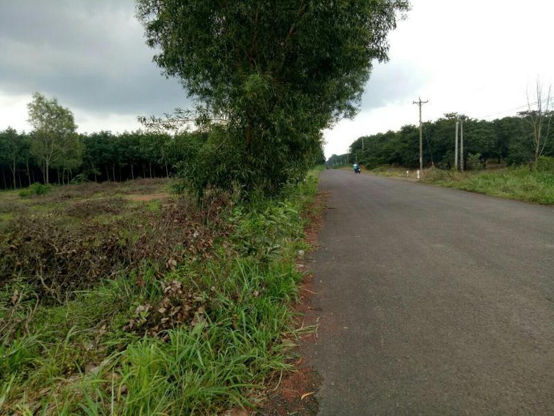 Bán đất mặt đường nhựa tân lợi đồng phú bình phước