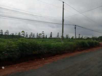 Bán khu đất làm dự án phân nền tại Đồng Xoài, Bình Phước