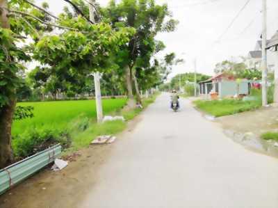 Bán GẤP đất cực đẹp 704m mặt tiền Đoàn Nguyễn Tuân đã san lấp, dễ mua, dễ bán, dễ sinh lời