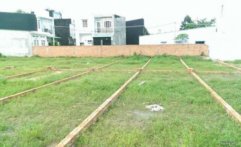 Cần bán lô đất giá rẻ tại Vĩnh Lộc Bình Chánh