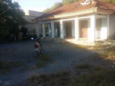 Lô đất 770m2 tại xã Thạnh Phú, Vĩnh Cửu, Đồng Nai