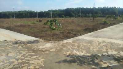 Bán lô đất gần cầu thủ biên đường 767 xã tân an
