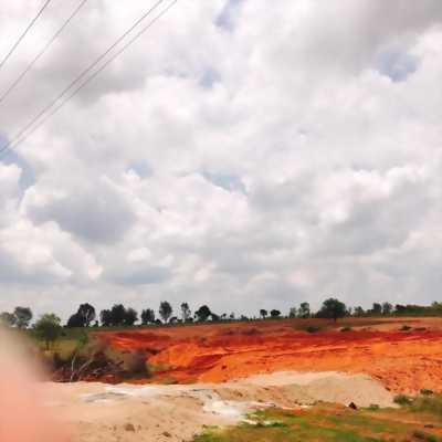 Đất nên Phan thiết 1000 m2 / 500 tr Lh 0931179419
