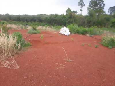 Bán gấp 1ha đất đỏ suối cao, sổ riêng 168tr/sào