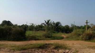 Bán 13 công vườn gần nhà máy ximang Tây Đô Phước Thới Ô Môn
