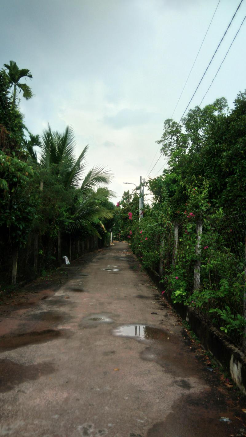 Bán nhà có vườn cây ăn trái lâu năm