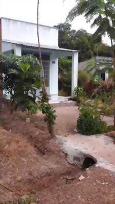 Bán đất vườn ven sông Xã Phú An, Bến Cát, Bình Dương, Gía 330 nghìn/m2.
