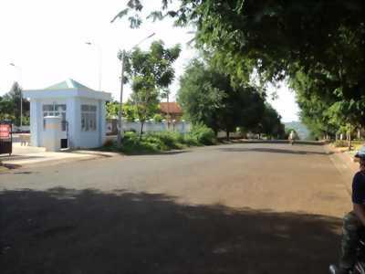 Đất mặt tiền gần ngã 4 Gò Mây và KCN Vĩnh Lộc