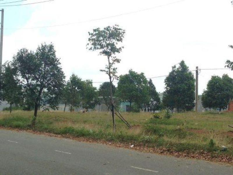 Gia đình tui cần tiền xây nhà bán gấp lô đất 300m2 gần Khu du lịch
