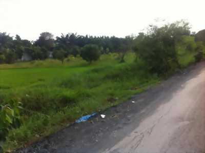 Đất nhà vườn 1000m2 đường liên ấp 4,5 xã Đa Phước
