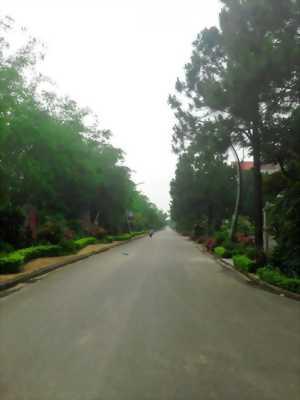Biệt Thự Sinh Thái Trên Đồi Thông Tại Hà Nội, Giá Chỉ 5 Tỷ