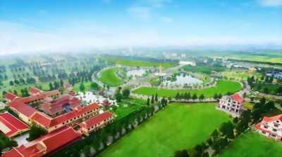Chỉ với hơn 5 tỷ sở hữu ngay 1 căn biệt thự đẹp như mơ
