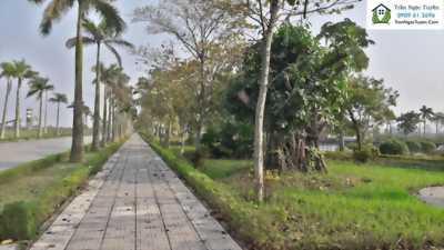 Tư vấn mua bán đất nền, biệt thự dự án Vườn Cam Vinapol, Hoài Đức, Hà Nội