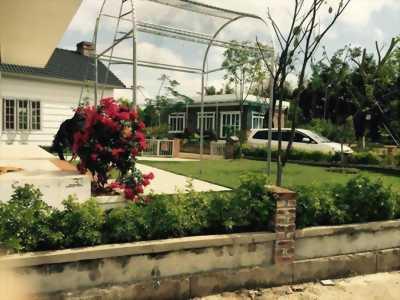 Resort Family Green Oasis Xuân Mai bất động sản sốt nóng