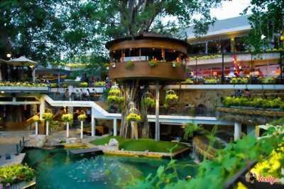 BT nghỉ dưỡng Ngà Voi, Lâm Sơn Resort, giá chỉ từ 4,7 tỷ