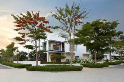 Bán nhà hai mặt tiền lô góc p bửu long nhà mới gần trường lạc hồng