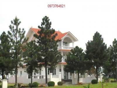 The Phoenix Garden mặt đường Tây Thăng Long vị trí căn đẹp nhất  liên hệ 0973764621