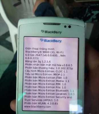Điện thoại Blackberry 9800 AT&T