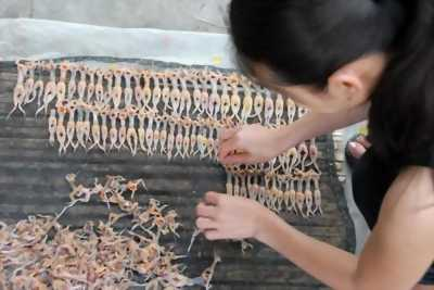 Bán Nhái cơm