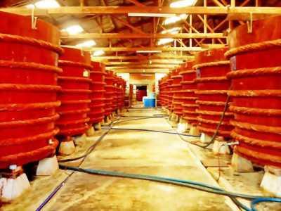 Nước mắm Phú Quốc - nước mắm nguyên chất
