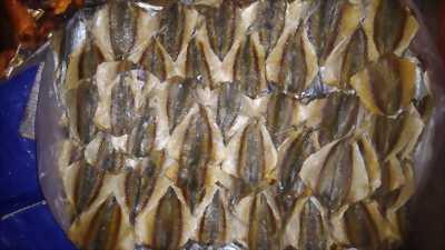 Cá khô, mực khô Quảng Ngãi