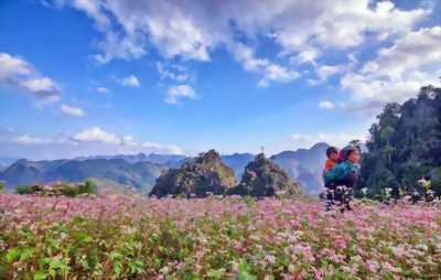 Du lịch Hà Giang trọn gói 3 ngày 2 đêm