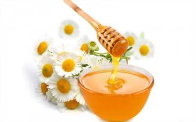 Bán mật ong hoa cà phê
