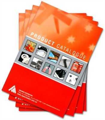 In ấn catalogue,hộp giấy nhanh giá rẻ