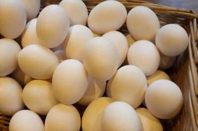 Trứng gà ta - Đồng Tháp