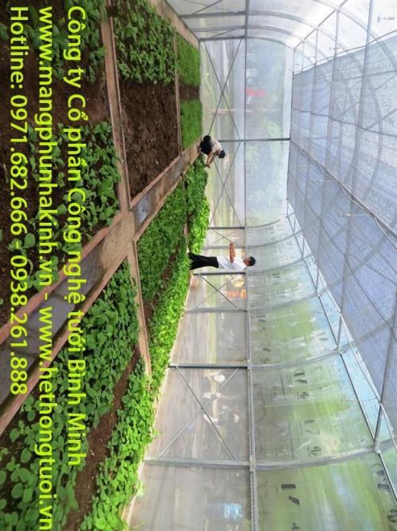 Cung cấp vật tư & thiết kế thi công lắp đặt nhà kính chuyên nghiệp,nhà kính trồng rau,nhà kính trồng dưa lưới