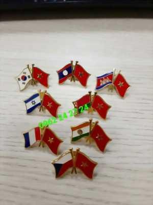 chuyên cung cấp huy hiệu hội đồng nhân dân kháo mới, huy hiệu lá cờ đảng, huy hiệu cờ hợp tác các nước