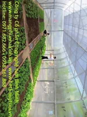 Màng PE nhà kính,cung cấp vật tư nhà kính,chi phí làm nhà kính, chi phí làm nhà màng, tự làm nhà kính trồng rau