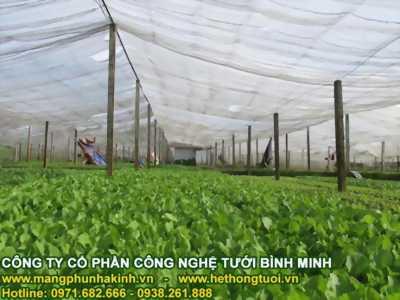 Lưới chắn côn trùng nông nghiệp, lưới chắn côn trùng hà nội, nhà lưới trên sân thượng
