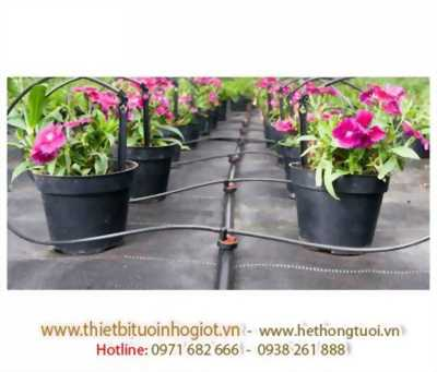 Nhà nhập khẩu và phân phối thiết bị tưới nhỏ giọt tại Việt Nam, công ty nhập khẩu thiết bị tưới nhỏ giọt