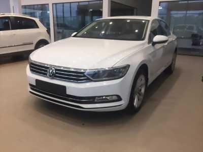 BÁN Volkswagen Passat Bluemotion mới nhập giá tốt