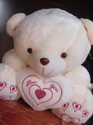 Gấu bông gòn mua ở đà lạt