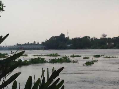 Mở bán căn hộ 660tr/căn –View sông Sài Gòn