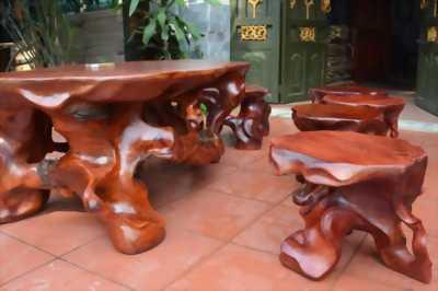 bộ bàn ghế gốc
