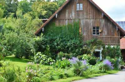 Bạn Muốn Sân Vườn Nhà Bạn Trở Nên Đặc Biệt ở Bình Dương