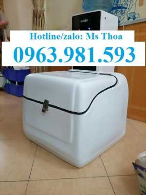Thùng chở hàng giá rẻ, thùng chở hàng sau xe máy, thùng giao hàng cao cấp.