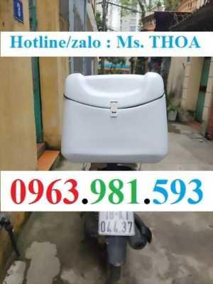 Thùng giao hàng, thùng ship hàng, thùng nhựa bảo quản đồ ăn, thùng chở hàng sau xe máy tại Hà Nội.