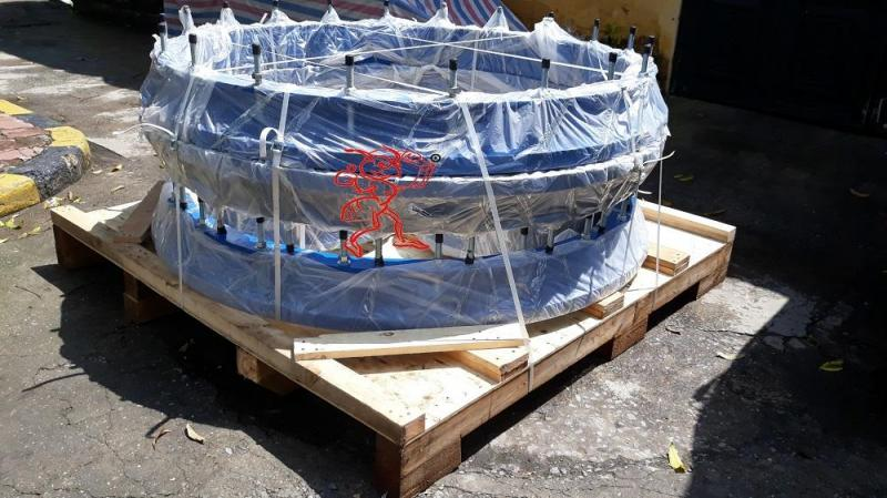 Red Ant Transport Company provides cargo packing