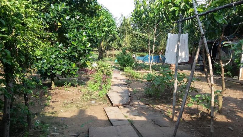Quy tắc bất biến khi bán đất vườn Nhơn Trạch gần phà Cát Lái