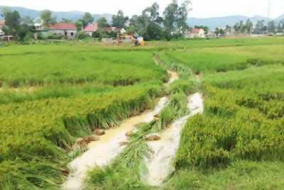 Nền góc gần BV đa khoa An Giang - Xẽo Chanh