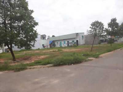 Ngân Hàng Thanh Lý Nhà Đất, Nhà Trọ tại Mỹ Phước