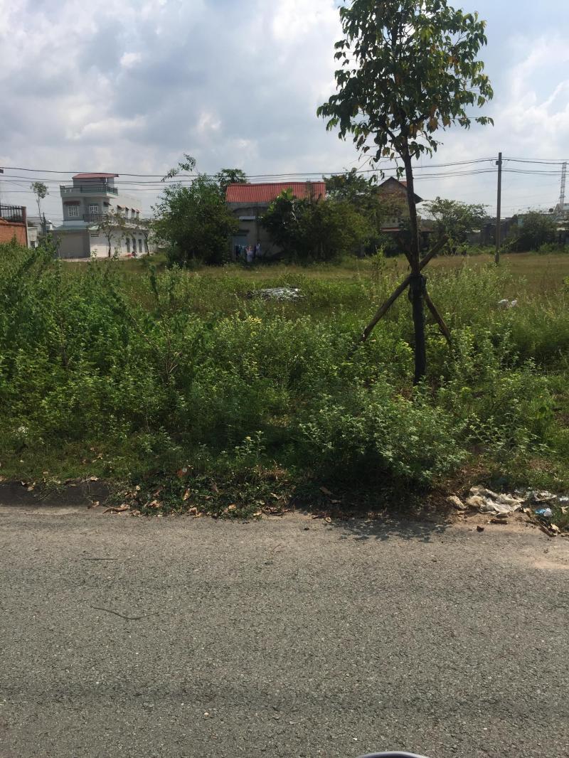 Chính chủ - Chị Như -Bán gấp lô đất mặt tiền đường lớn 25n, sát chợ,shr, thổ cư...