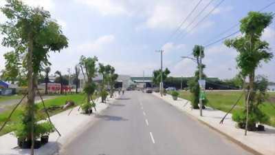 Suất đặc biệt đất biệt thự sổ đỏ, xây dựng tự do Quảng Ninh